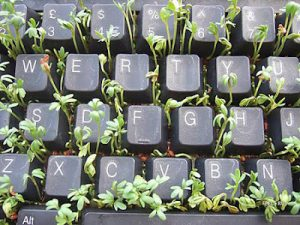 keyboard-art-fun-diy-amazing-artistic-recycling-recycle-reuse-remade-gadgets-frame-photo-book-organizer-box-garden-tictactoe_11_large
